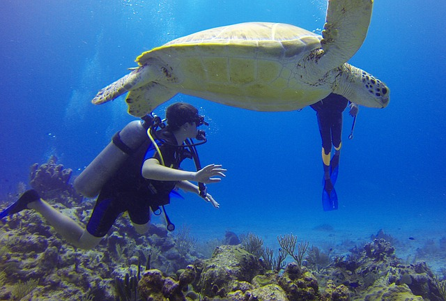 zásady bezpečného potápění